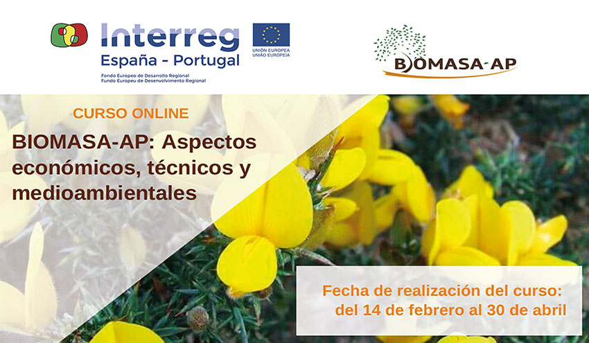El proyecto Biomasa-AP forma a profesionales del sector sobre la biomasa como recurso energético del futuro