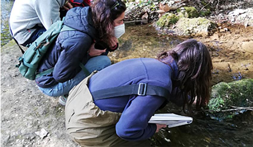 La Agencia Catalana del Agua adjudica el contrato para el control de los macrófitos en los ríos