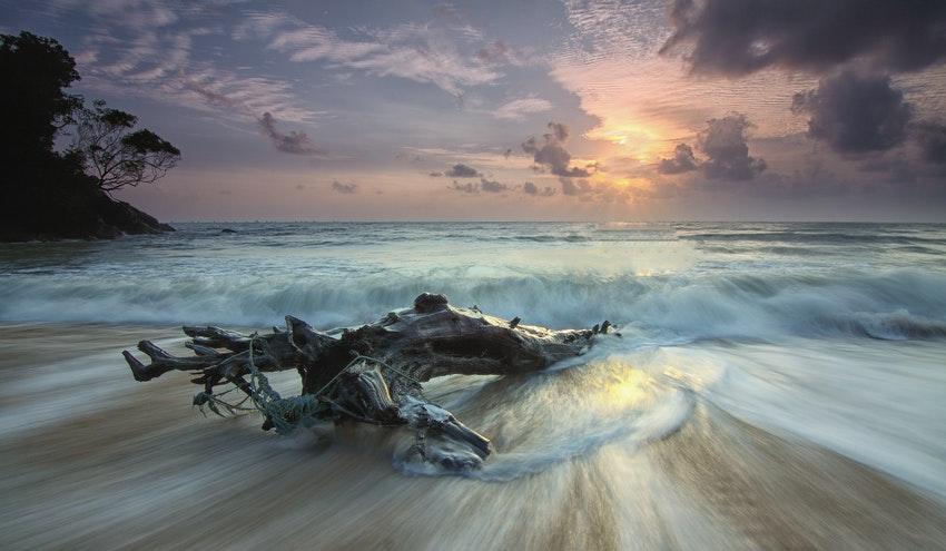 No podremos alcanzar un desarrollo sostenible con unos océanos enfermos