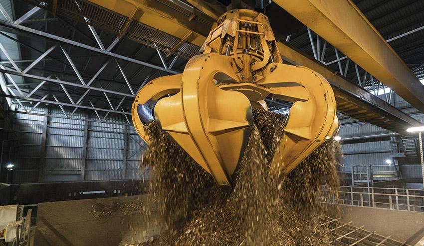 El sector de la bioenergía mantiene velocidad de crucero