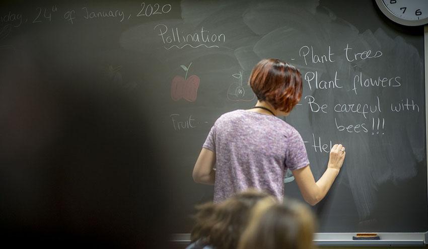 Naturaliza, el proyecto de educación de Ecoembes, ofrece formación online a profesores
