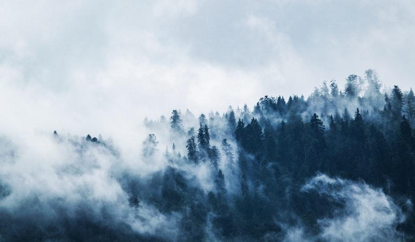 El mundo debe restaurar 1000 millones de hectáreas de tierras degradadas para mitigar el cambio climático