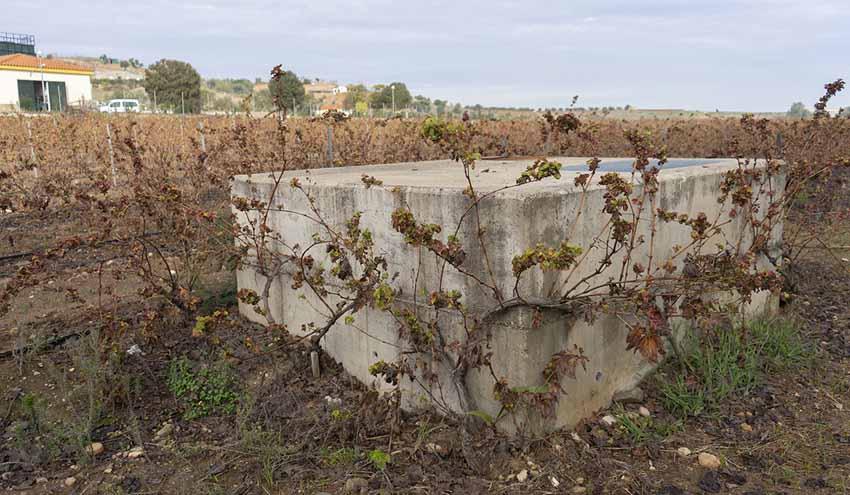 Promedio instala rejas en colectores evitar el vertido de plásticos y de otros desechos a las riveras