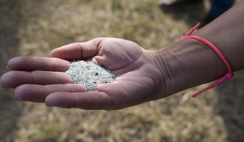 Científicos del CSIC estudian reutilizar zeolitas usadas en la potabilización del agua como fertilizantes agrícolas
