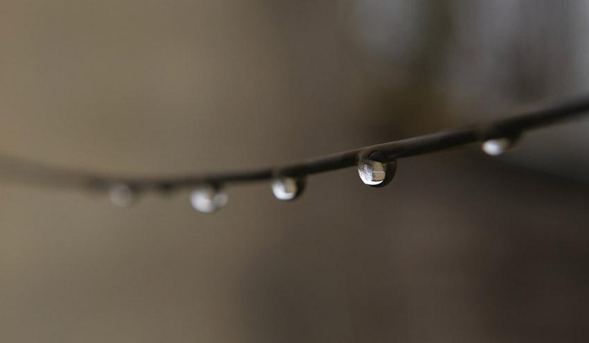Aprobados 8 millones de euros para cubrir los costes de la producción de agua para riego en Canarias