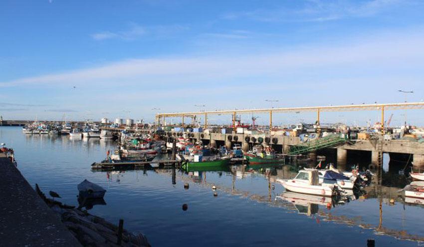 Ferrovial Serviços consigue el servicio de limpieza y gestión de residuos del puerto pesquero de Matosinhos