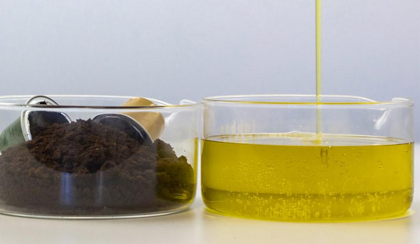 Residuos biológicos procedentes de alimentos y jardinería, clave en una economía más circular