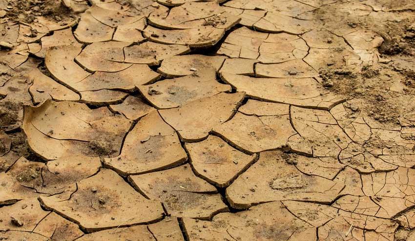 Ecologistas en Acción: la mala gestión de la sequía sitúa al borde del colapso a los humedales