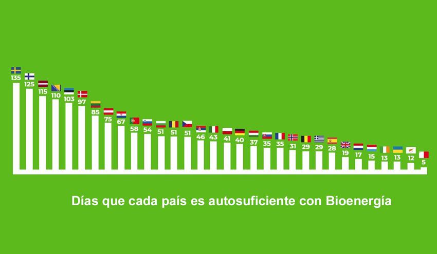 La biomasa puede satisfacer toda la demanda energética nacional de un año durante 28 días