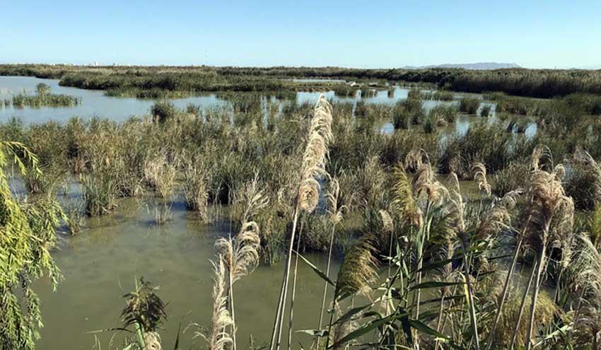 Un estudio analiza las posibilidades de abastecer a València con recursos procedentes de aguas subterráneas