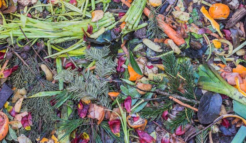 La Generalitat Valenciana colabora con la Universidad Miguel Hernández en un proyecto de investigación en compostaje