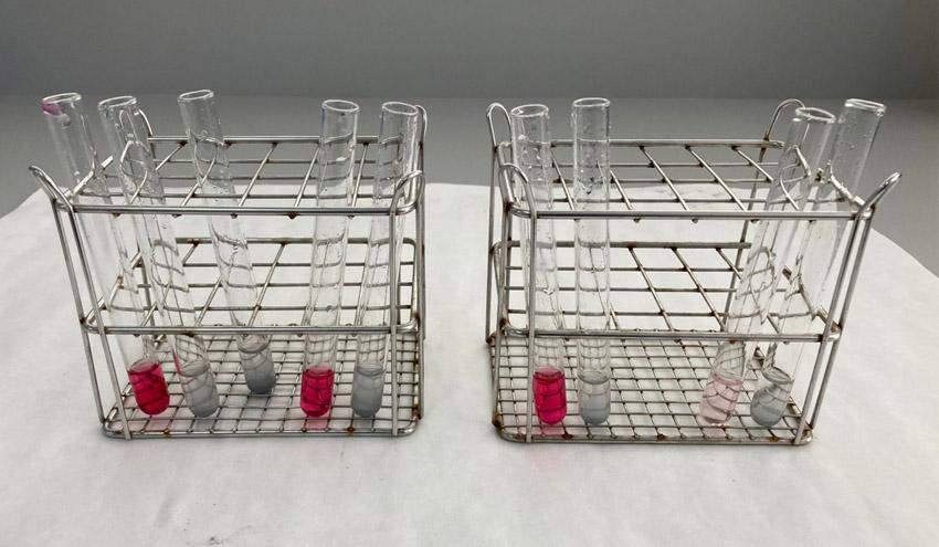 Científicos de la UPCT logran eliminar nitratos del agua permitiendo su uso para regadío
