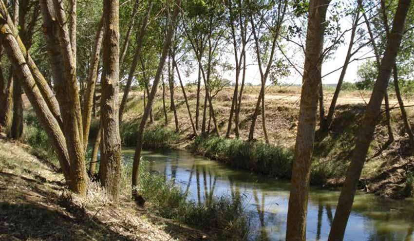 Optimizar la gestión sostenible de los acuíferos para asegurar el futuro hídrico
