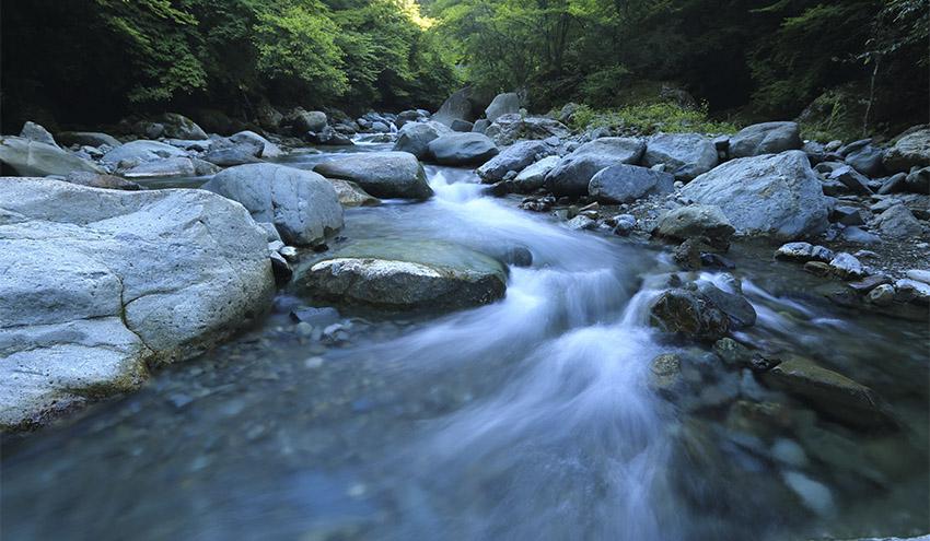 Los recursos hídricos son una parte esencial de la solución al cambio climático