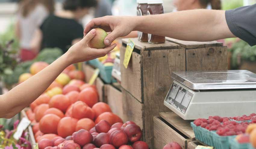 Udalsarea 2030 lanza una guía para la promoción de la economía circular desde el ámbito local