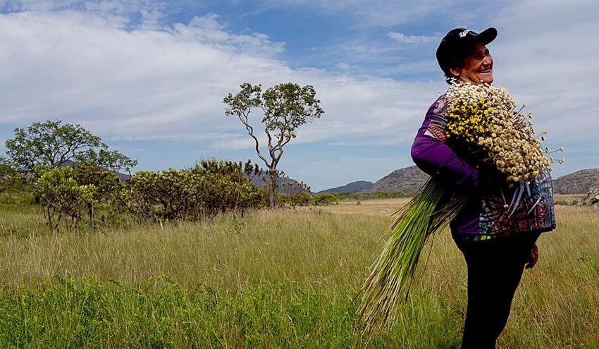 La pandemia de coronavirus podría ser una oportunidad para construir una economía verde