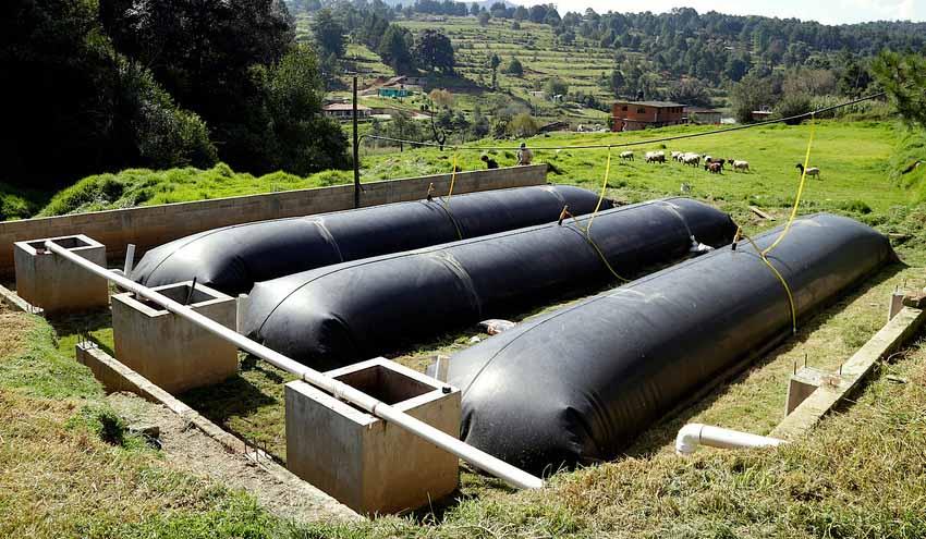 Biobolsa, un  nuevo biodigestor que ya abastece de energía a 3.000 granjas en Latinoamérica