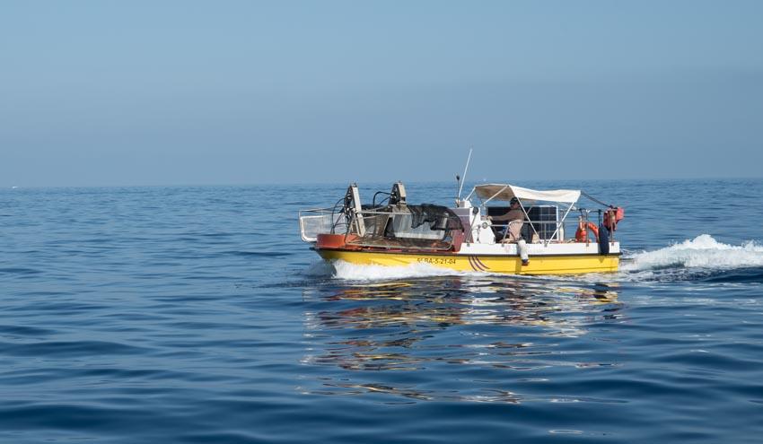 El Servicio de limpieza del litoral balear recoge casi 20 toneladas de residuos