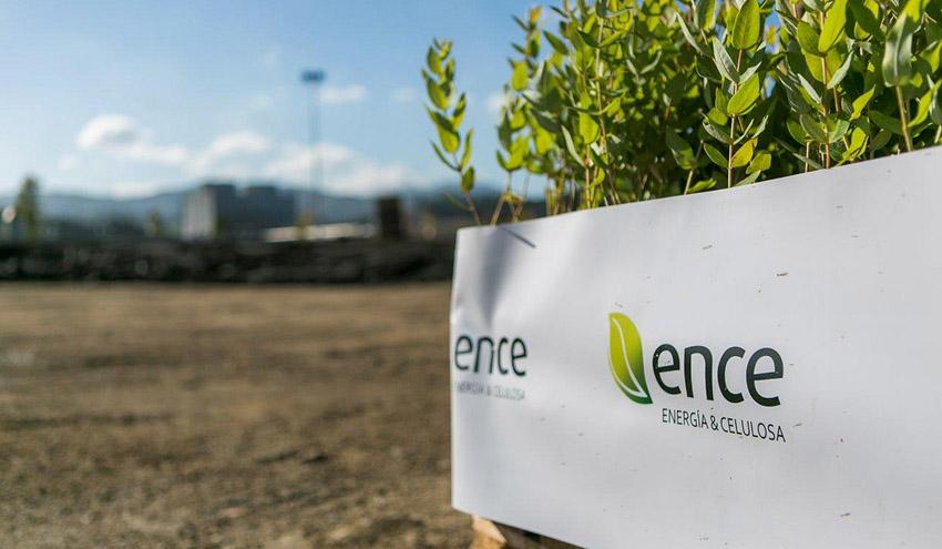 ENCE ultima la redacción del proyecto de la planta de generación con biomasa de El Ejido