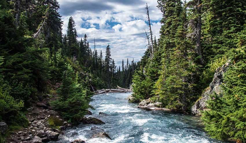 Los métodos de post-procesamiento hidrológico generan predicciones más exactas y fiables