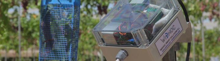 Un sensor inteligente permite medir de forma simultánea parámetros de suelo, aire y agua en cultivos agrícolas