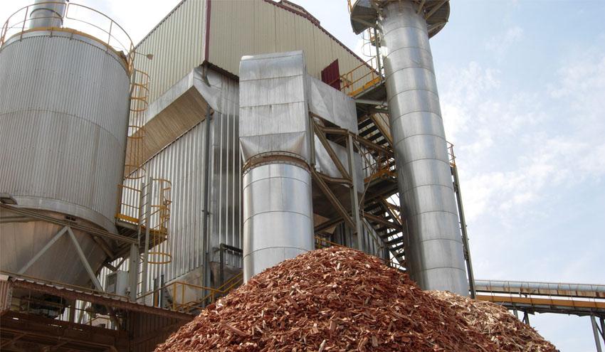 Elecnor construirá dos plantas de biomasa de 15 MW en Portugal