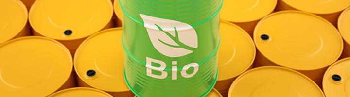Bioenergía a partir de residuos urbanos, innovación y tecnología española puntera a nivel mundial