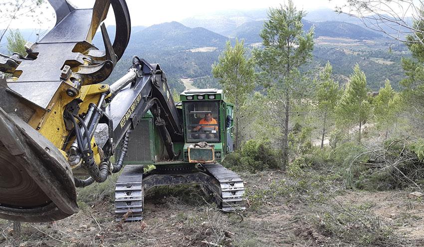 Una producción récord de biomasa en un año de retos medioambientales