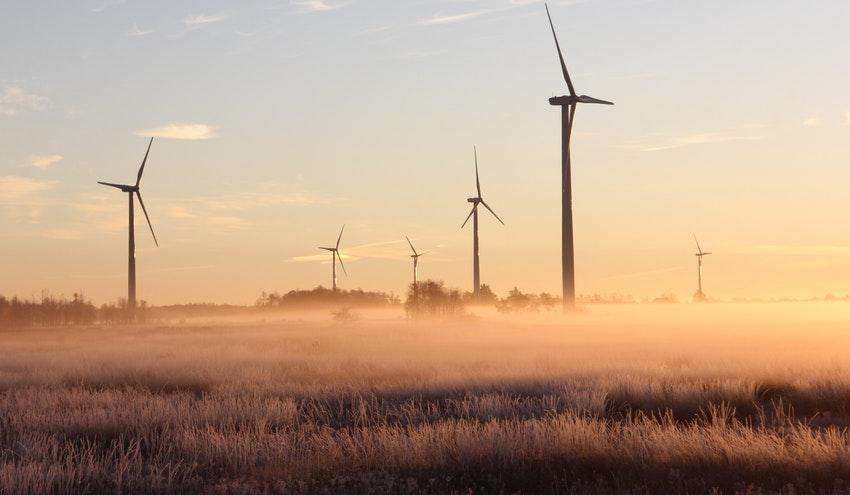 APPA Renovables celebra el éxito de la primera subasta renovable de 2021