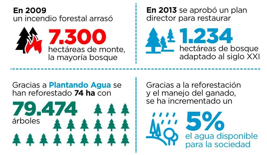 Concluye el proyecto 'Plantando Agua' con más de 1.500 millones de litros de agua devueltos a la naturaleza