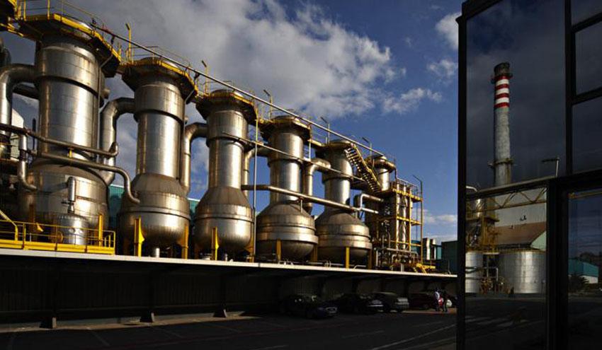 Ence busca alternativas para ubicar su planta de biomasa de 70 MW de Canarias