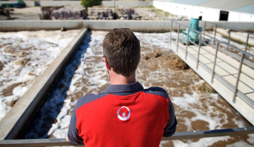 Hinojosa Paper confía en Veolia para la gestión global de sus utilities y el tratamiento de agua