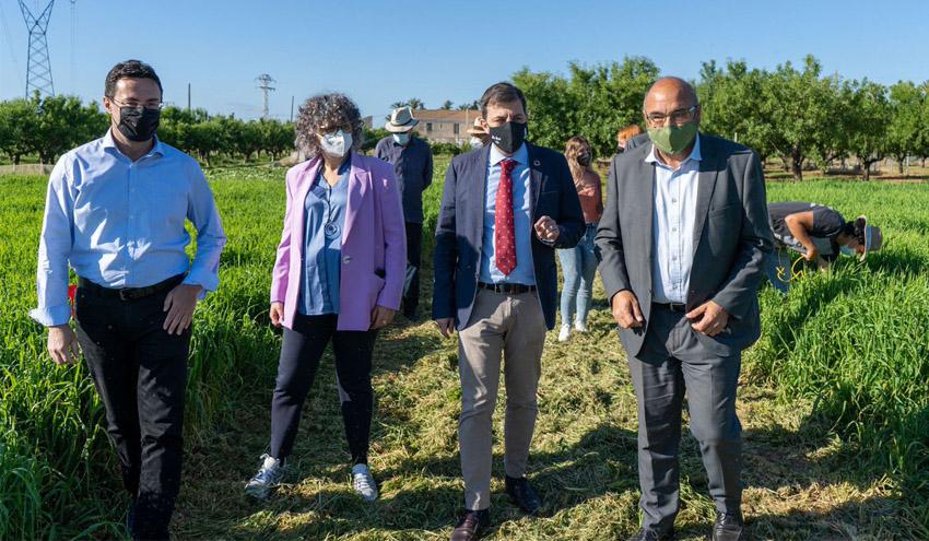 Investigan el potencial de la cebada como filtro verde para el Mar Menor
