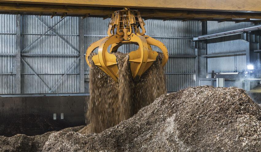 Biomasa, la energía más versátil para la recuperación