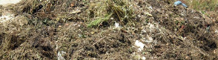 Compost de residuos vegetales de jardinería y su uso como sustrato, nueva jornada técnica del IRTA