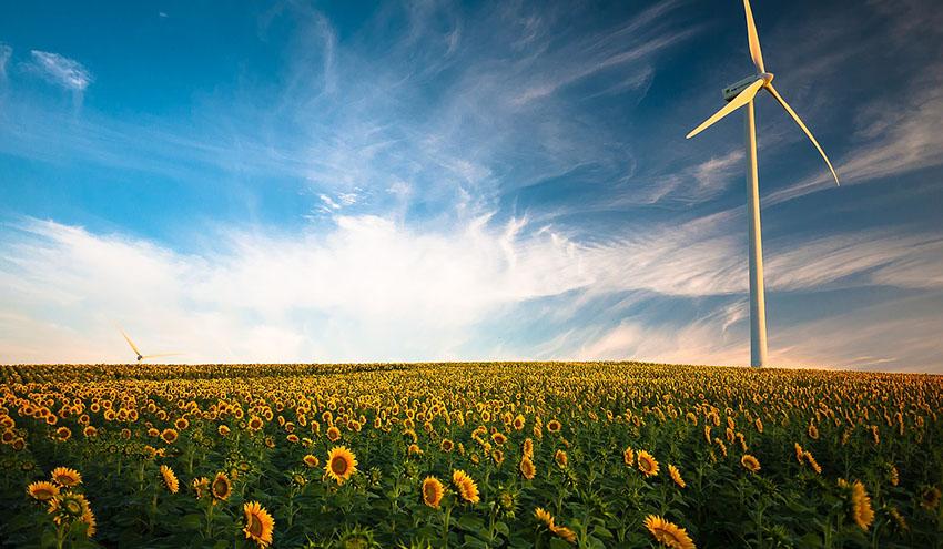 Pacto Verde: clave para una Europa climáticamente neutra y sostenible