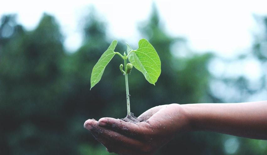 Plan Anual Normativo 2020: novedades referentes al cambio climático, residuos, eficiencia energética y urbanismo