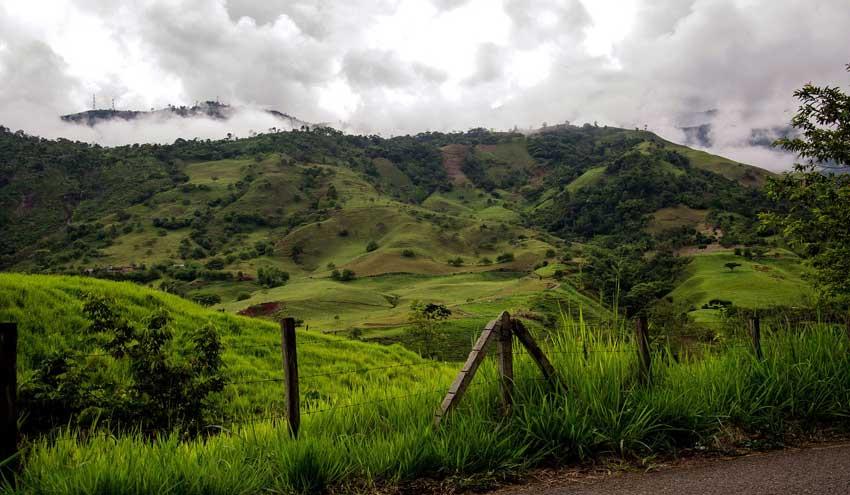 Colombia será el país anfitrión del Día Mundial del Medio Ambiente 2020