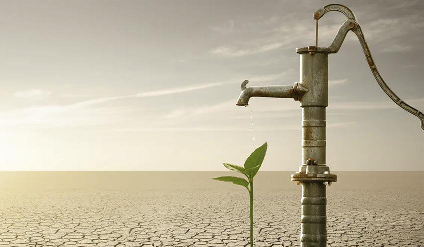 Cómo alimentar a la población mundial sin agotar el agua dulce del planeta