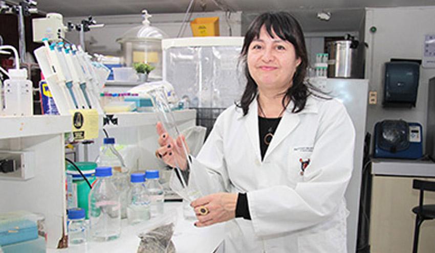 Desarrollan un biofiltro que captura cobre de aguas utilizadas en procesos mineros