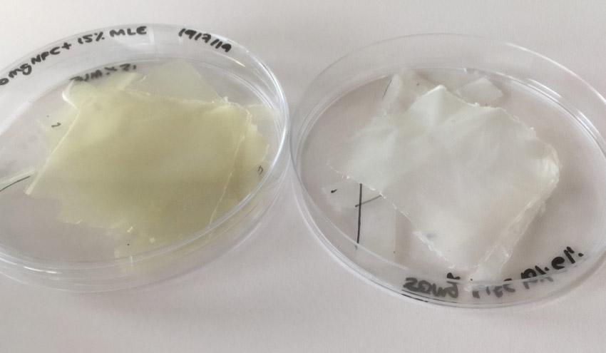 Crean un bioplástico de nanocelulosa y mango que mejora la conservación de alimentos