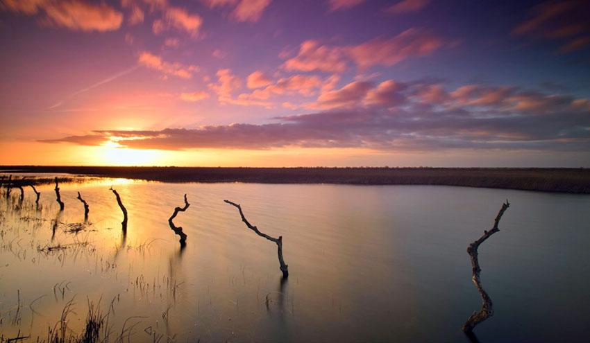 Doñana celebra su aniversario rodeada de amenazas