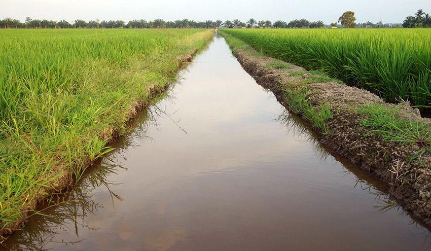 El Parlamento Europeo aprueba el nuevo Reglamento sobre reutilización del agua para agricultura