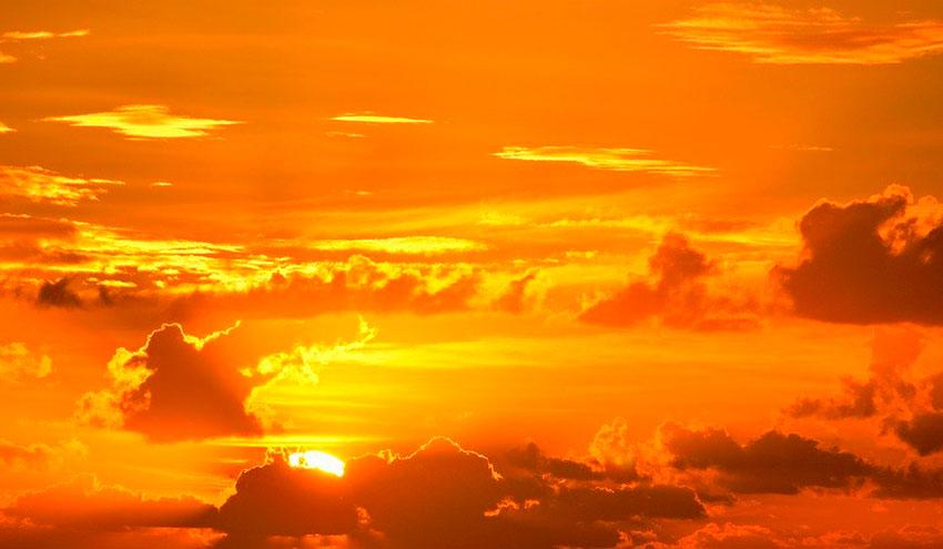 Cinco cosas que debes saber sobre la COP25
