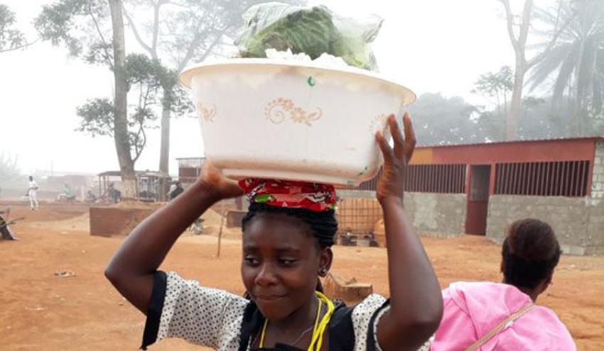 Incatema apoyará a la FAO en la celebración del Día Internacional de concienciación sobre el desperdicio alimentario