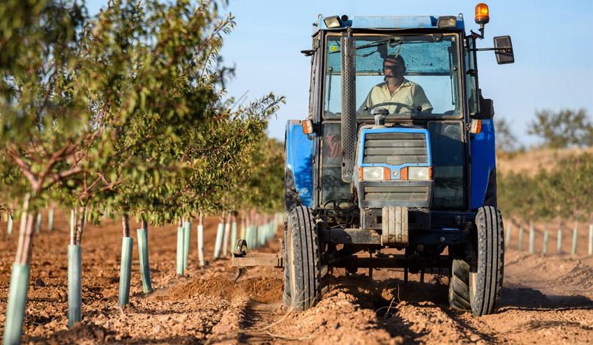 Fundación Global Nature y Sigfito reclaman normativas que faciliten la gestión de los residuos agrícolas