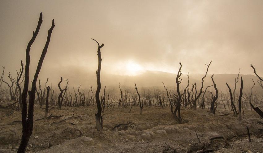 Qué emociones debe transmitir una campaña medioambiental para comprometernos