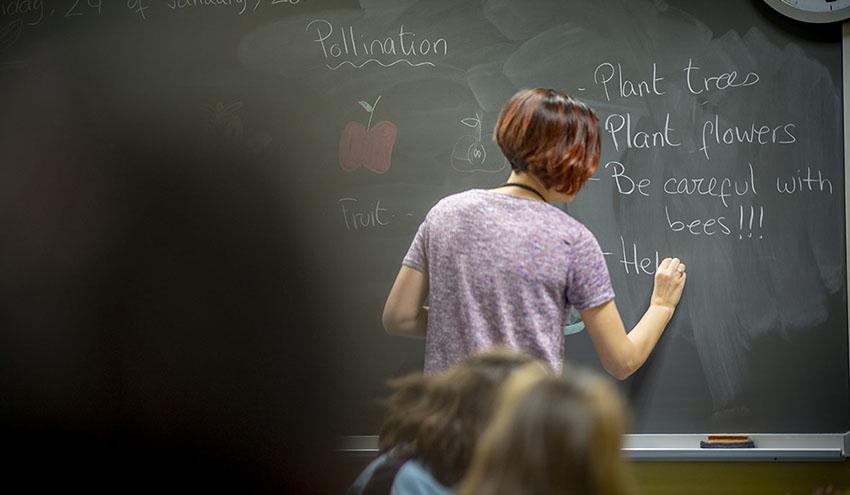 8 de cada 10 jóvenes considera esencial la labor del docente para inculcar valores medioambientales