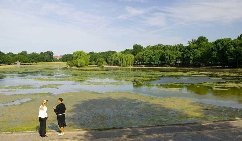 Fertilizantes: desafíos y soluciones para proteger nuestro planeta