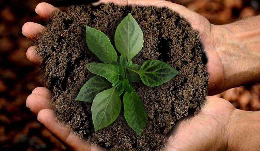 ¿Cómo garantizar el uso sostenible de los recursos de todos?